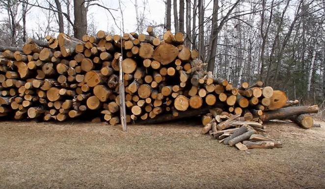 Palivové drevo Nitra