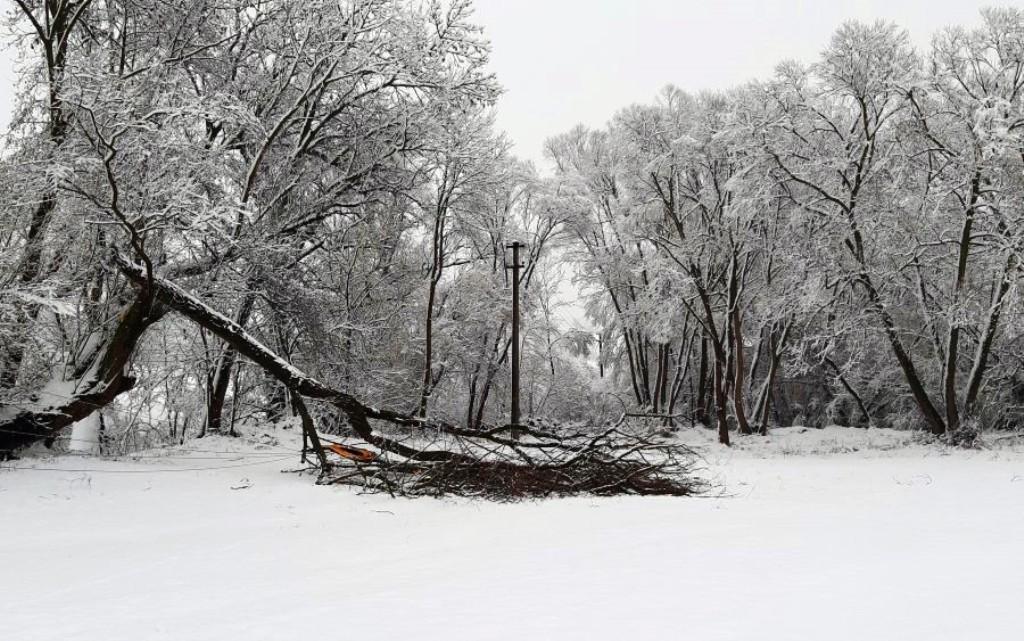 Energetikov potrápilo extrémne počasie, pri výpadkoch elektriny pomohol nový web
