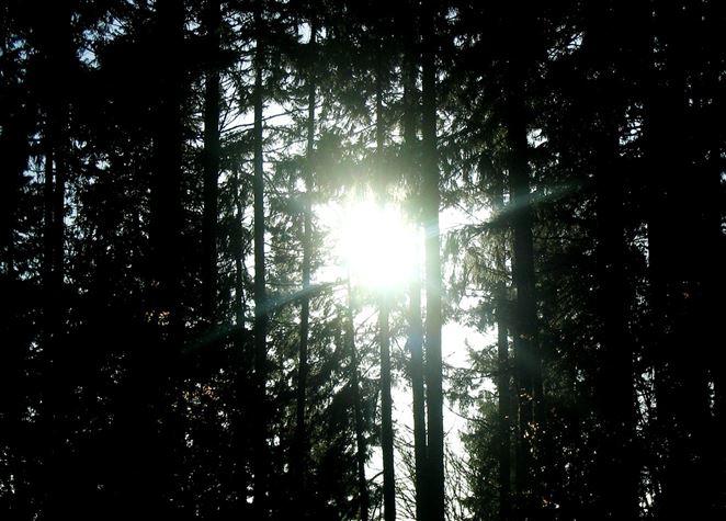 Vynašli spôsob, ako energiu zo slnka premieňať na tekuté palivo