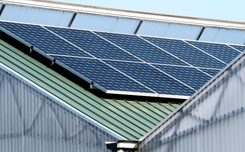 Záujem firiem o obnoviteľné zdroje prevyšuje ciele vlád, ukázal prieskum Visegrad+