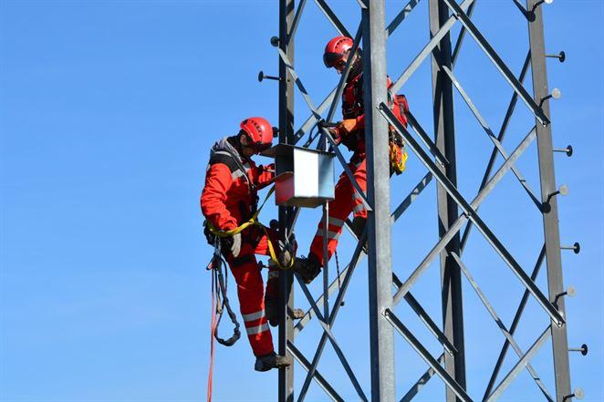 Na elektrické stožiare umiestňujú búdky pre dravce