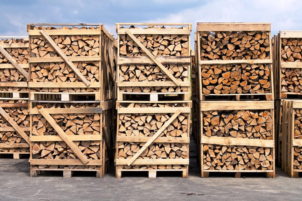 Ťažba dreva na Slovensku klesla na najnižšiu úroveň od roku 2005, hlási agrorezort