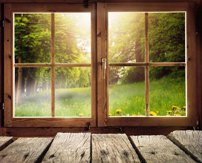 Oplatia sa drevené okná? Cena a tepelno-izolačné vlastnosti závisia od druhu dreva