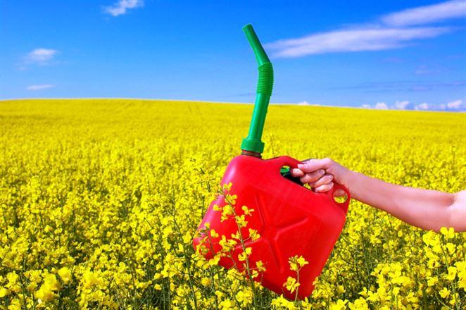 Biopalivá prvej generácie dostali v europarlamente červenú. Majú prísť o stimuly