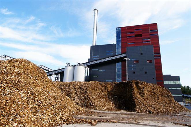 Spotreba drevnej biomasy sa presúva od energetiky ku drevospracujúcemu priemyslu