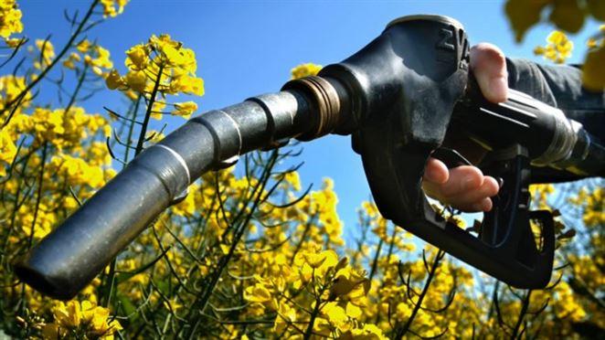 Biopalivá prvej adruhej generácie. Vysvetlíme vám rozdiely