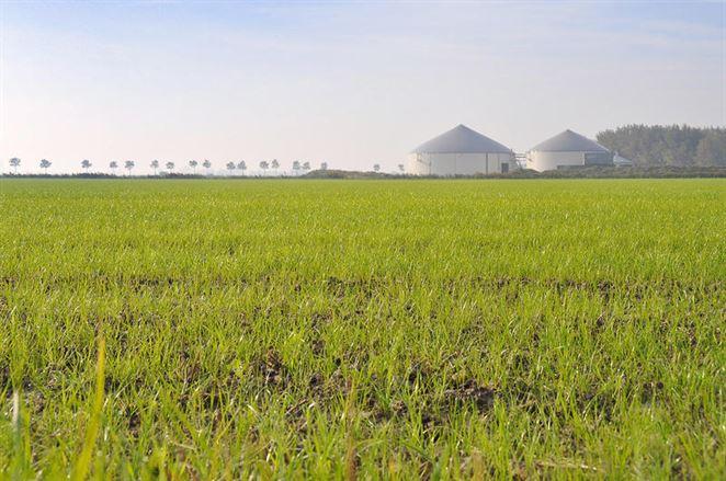 Najväčší výrobca bioetanolu zvyšuje kapacity