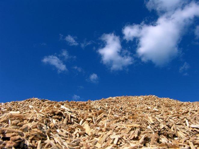 Dánsko sprísňuje podmienky pre spaľovanie drevnej biomasy nad rámec požiadavky EÚ