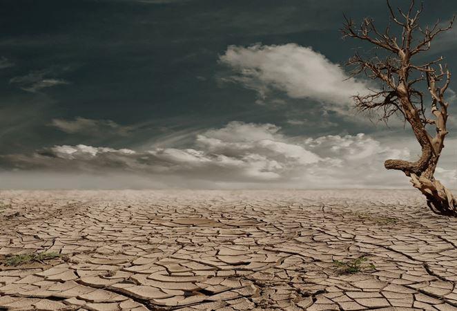 Trend nárastu katastrofického sucha vo svete vedci nepotvrdili