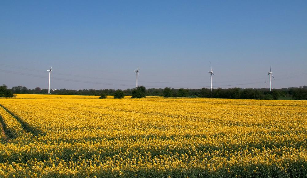 Produkcia biopalív vo svete klesne prvýkrát za posledných 20 rokov
