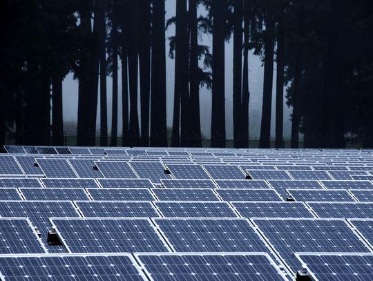 Solárne elektrárne budú pribúdať pomalšie, rekordné tempo výstavby sa spomalí
