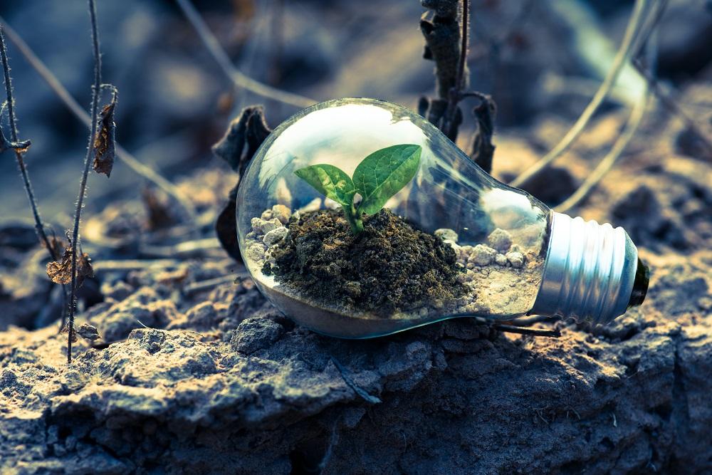 Umelá fotosyntéza má potenciál stať sa ďalším obnoviteľným zdrojom energie