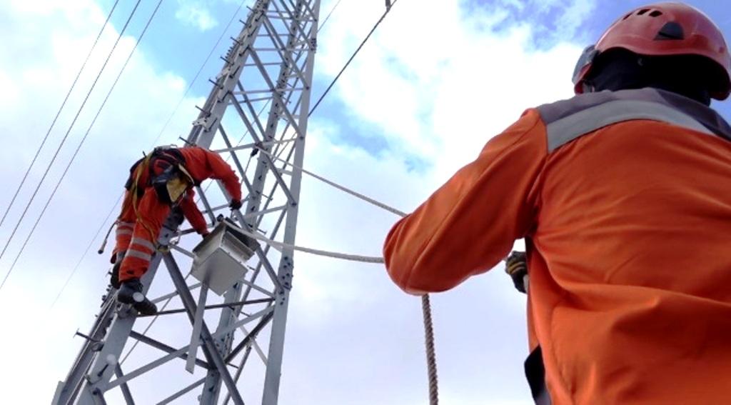 ZSD inštalovala na stožiare elektrického vedenia nové búdky pre dravce