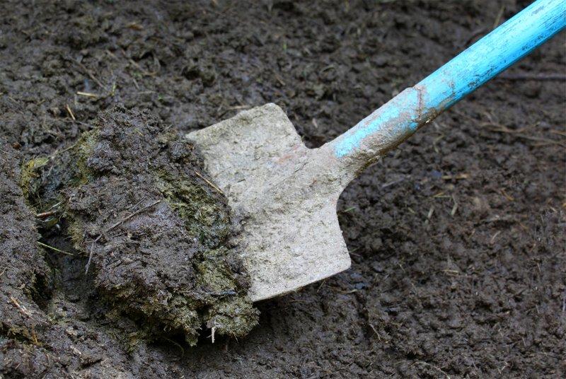 Produkcia bioplynu z biologicky rozložiteľných odpadov