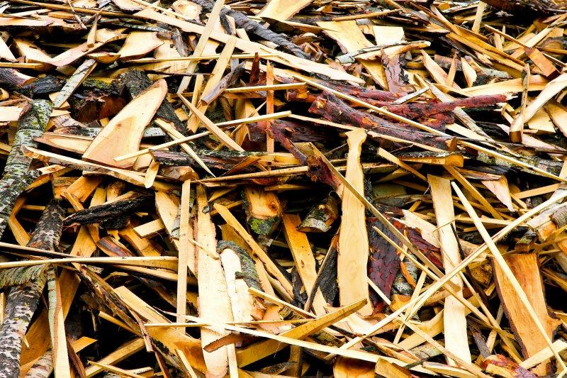 Palivová drevná biomasa a jej využitie